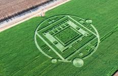 Crop Circle