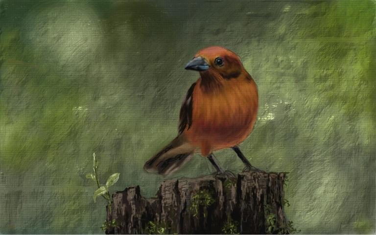NVIDIA Dabbler Painting